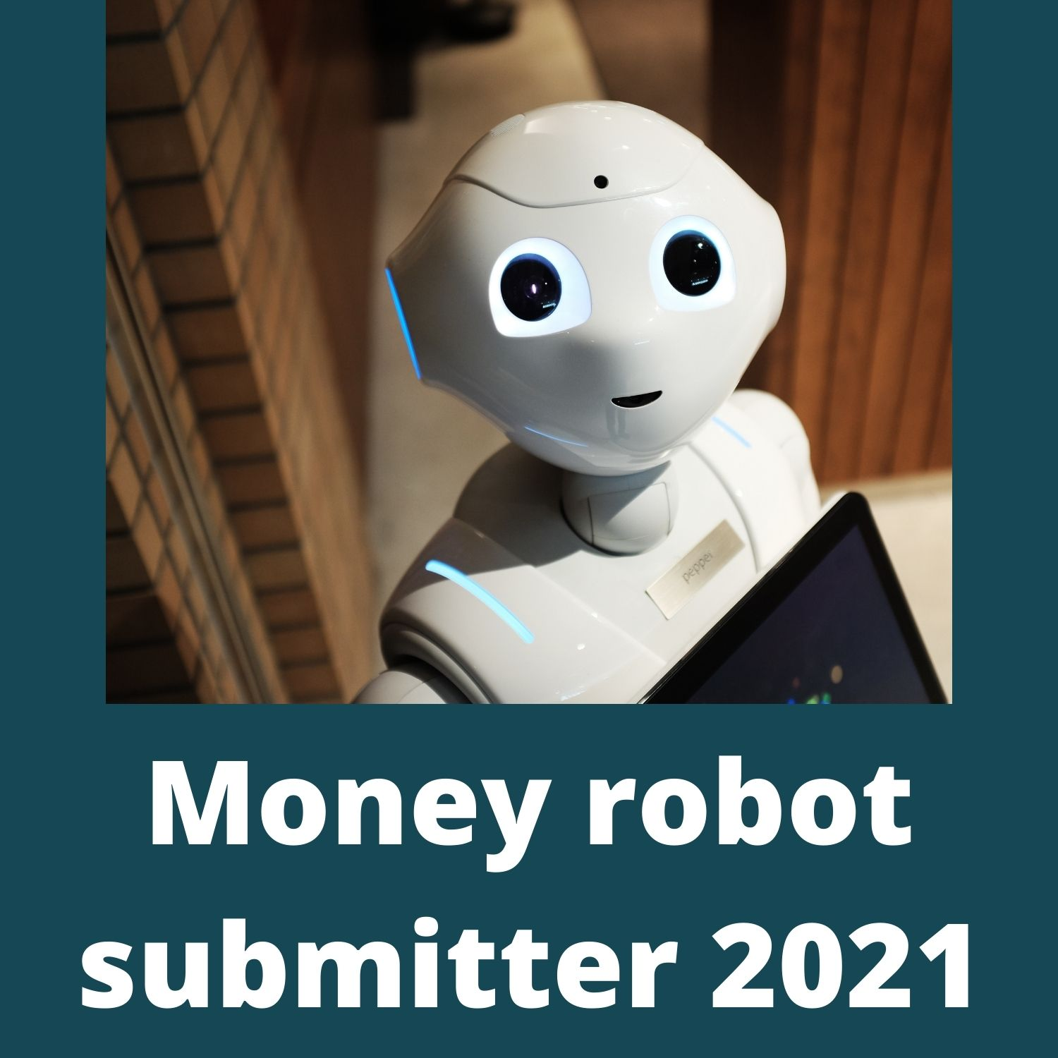 Money robot submitter 2021